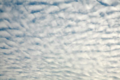 Free Cloudy Sky Background Royalty Free Stock Photography - 15376987