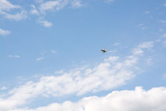 Cloudy sky with bird flying Stock Photo