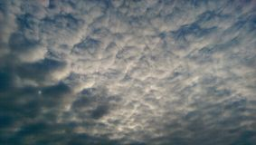 Cloudy sky. Blue cloudy sky royalty free stock photo