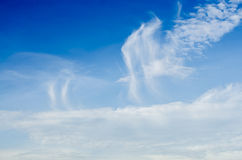 Cloudy sky flying Bird. Blue royalty free stock image