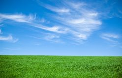 Cloudy sky and grass Royalty Free Stock Photos