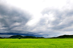 Cloudy sky with green rice field and moutain Royalty Free Stock Photos