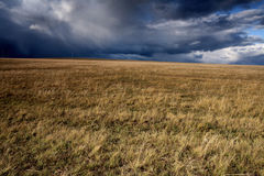 Cloudy sky and meadow. In Autumn Stock Photo