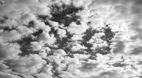 Cloudy sky. Monochrome picture of cloudy sky Stock Images