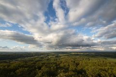 Cloudy sky over a beech forest. Stock Photo