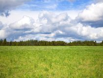 Cloudy sky over bright green meadow Royalty Free Stock Photo