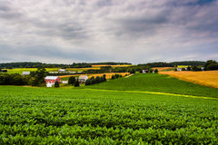 Cloudy sky over farm fields and rolling hills in rural York Coun Royalty Free Stock Image
