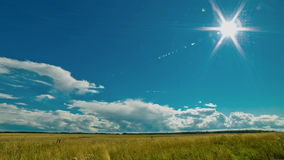 Cloudy sky over field. Cumulus clouds, sun, rain stock video
