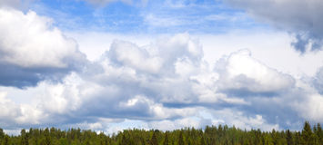 Cloudy sky over the forest Stock Photography