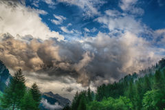Cloudy sky over the forest Royalty Free Stock Image