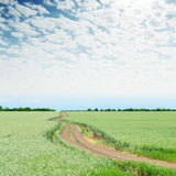 Cloudy sky over green field and road Royalty Free Stock Photo