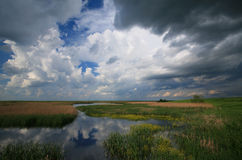 Cloudy sky over marshes. And storm approaching royalty free stock images