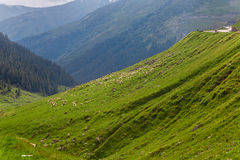 Cloudy sky over Transfagarasan road. Carpathians, Romania stock photography