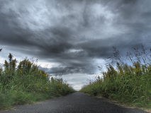Cloudy sky and path. This is a photo of a cloudy sky and path Royalty Free Stock Photo
