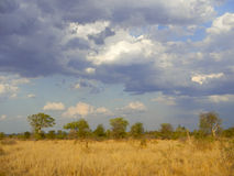 Cloudy sky after the storm , Kruger, South Africa Royalty Free Stock Photo