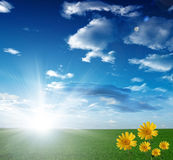 Cloudy sky and sun. With flowers Royalty Free Stock Images