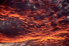 Cloudy sky at sunset. Dramatic sky at sunset with strong color, soft clouds and atmospheric effects Royalty Free Stock Photography