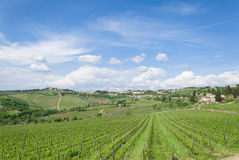 Cloudy sky in tuscan vineyard Stock Photography