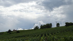 Cloudy sky on the vineyards. Color photo of a cloudy sky on the hillsides of the vineyards of Épernay in France.The contrast between the white clouds and the royalty free stock photos