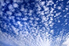 Cloudy sky in white and blue 02. Sheep clouds and a blue sky background Royalty Free Stock Photo