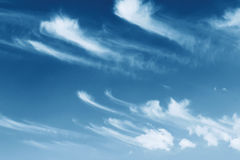 Cloudy summer sky Royalty Free Stock Images