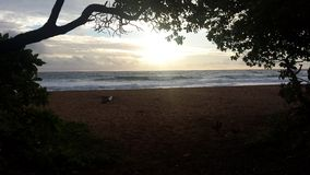 Cloudy Sunrise at the beach. Kauai bike path Stock Image