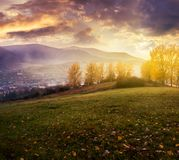 Cloudy sunrise in mountains. Gorgeous countryside in autumn. trees with yellow foliage on hill and fog down in the valley royalty free stock image