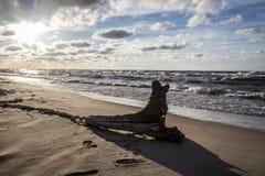 Cloudy sunset. Cloudy beach in karwienskie blota Royalty Free Stock Photos