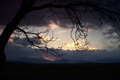 Cloudy sunset with silhouette from a tree royalty free stock photos