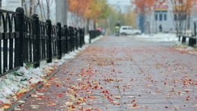 Cloudy weather with the first snow. Autumn fallen leaves lie on the pavement stock video footage