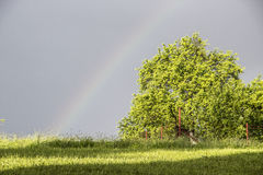 Cloudy weather - Rainbow. Cloudy weather in the morning Stock Photography