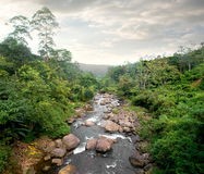 Cloudy weather and river Stock Photography