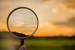 Clound di ricerca della lente d'ingrandimento e filel verde del riso sul cielo di tramonto Immagini Stock