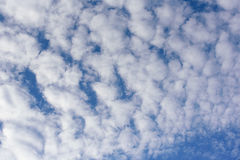 Clound in the sky. The scatter clound in the sky Royalty Free Stock Photos