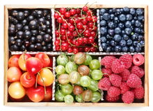 Clourful berries. Royalty Free Stock Images