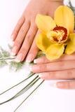 Clous avec la fleur Images stock