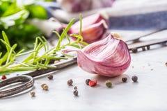 Clous de girofle et ampoules d'ail avec du sel et le poivre de romarin Photographie stock