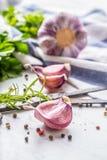 Clous de girofle et ampoules d'ail avec du sel et le poivre de romarin Photo libre de droits