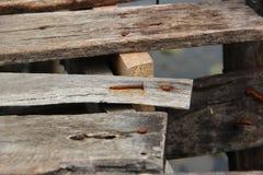 Clous et bois photographie stock libre de droits