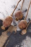 Clous et têtes de girofle secs Images stock