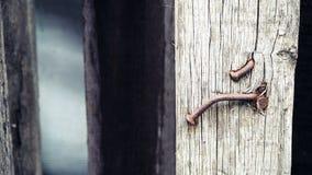 Clous rouillés en bois images stock