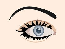 Clous up eye isolated Stock Image