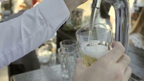 Clous-up pours Cider or Beer on Glass.  stock video