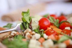 Clouse acima da salada Imagens de Stock