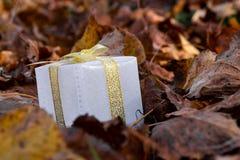 Clouse encima de la caja de regalo en el bosque con las hojas naturales del árbol foto de archivo