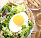 Clouse up Salad. Freshness and healthy close up salad Stock Image