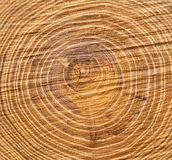 Clouse up wood texture Royalty Free Stock Image