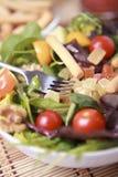 Clouse vers le haut de salade Images libres de droits