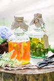 Clouseup of herbs in bottles as natural medicine Stock Images