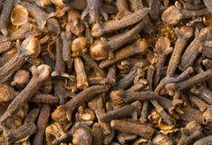 Clove Royalty Free Stock Images